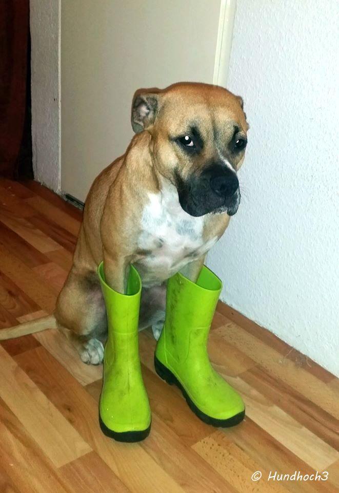 Maila ist bereit für den Regen!